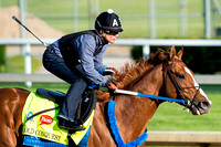 Bold Conquest worked five furlongs Monday in 1:01.80 under exercise riderAbel Flores in preparation for the Kentucky Derby.
