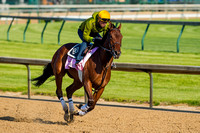 Birdatthewire galloped with exercise rider Faustino Aguilar up, in preparation for the Kentucky Derby.