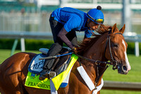 "On the ""also-eligible"" list, Frammento galloped 1 and 1/2 miles under exercise rider Juan Bernardin in preparation for a possible start in the Kentucky Derby."