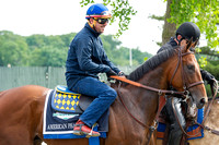 American Pharoah heads back to barn 1 after jogging and backtracking on his first trip to the main track at Belmont Park in Elmont, New York.