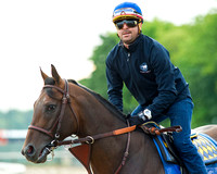 Breeders' Cup (GI) winner and entrant in the Metropolitan Handicap, Bayern went jogging and backtracking on his first trip to the main track at Belmont Park in Elmont, New York.