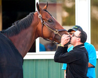 Exercise rider Georgie Alvarez kisses American Pharoah after winning the 147th Belmont Stakes (GI) and becoming the 12th horse to win the Triple Crown.