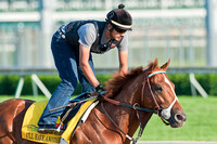 Kentucky Oaks 138 contender I'll Have Another gallops around the track.