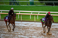 Impassable, entered for the Breeders Cup Mile (GI) and Bawina, entered for the Breeders' Cup Filly & Mare Turf (GI), trained by Carlos Laffon-Parias, train together at Keeneland Race Course.