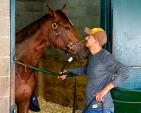 Land Over Sea, trained by Doug O'Neill, is a participant in the Breeders' Cup Juvenile Fillies Turf.