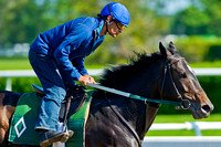 Matusak gallops in preparation for the 146th Belmont Stakes at Belmont Park in New York.