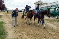 "Preakness favorite Nyquist with exercise rider Jonny Garcia (center), gets a fist bump from ""horse-bodyguard"" Marvin Bostock (left) after  morning exercise at Pimlico Race Course in Baltimore, Marylan"