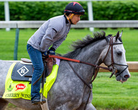 Cherry Wine, trained by Dale Romans, gallops in preparation for the Kentucky Derby in Louisville, Kentucky.