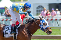 Disco Chick with Trevor McCarthy up and trained by Mario Serey, Jr., wins the Skipat stakes at Pimlico Race Course in Baltimore, Maryland.