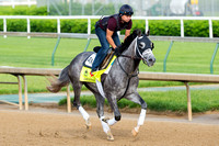 Destin, trained by Todd Pletcher, gallops in preparation for the Kentucky Derby at Churchill Downs in Louisville, Kentucky.