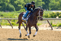 2016 Belmont Stakes Racing Festival Photo Diary Day 2