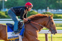 Belmont Stakes contender Governor Malibu, trained Christophe Clement, gallops in preparation for the Belmont Stakes at Belmont Park in Elmont, New York.