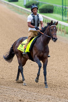 Exaggerator, trained by Keith Desormeaux, gallops in preparation for the Kentucky Derby in Louisville, Kentucky.