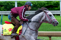 Lani, trained by Mikio Matsunaga, gallops in preparation for the Kentucky Derby in Louisville, Kentucky.