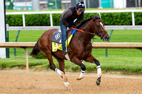 Kentucky Derby contender Brody's Cause, trained by Dale Romans, gallops during morning exercise at Churchill Downs in Louisville, Kentucky.