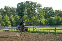 Preakness contender Cherry Wine, trained by Dale Romans, gallops at Pimlico Race Course in Baltimore, Maryland.