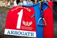 2017 Pegasus World Cup Invitational winner Arrogate's saddle cloth in the Gulfstream Park paddock.
