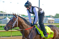 Commanding Curve galloped in preparation for the 140th Kentucky Derby.