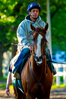 California Chrome heads to the race track for his final workout in preparation for the 136th Belmont Stakes and a possible Triple Crown at Belmont Park in New York.