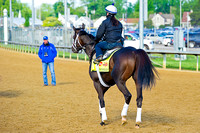 Trainer Todd Pletcher observes Intense Holiday returning from morning exercise in preparation for the 140th Kentucky Derby.