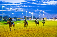 Horses exercising at Churchill Downs in Louisville, Kentucky.
