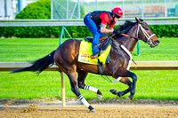 Ride On Curlin gallops around Churchill Downs in preparation the the 140th Kentucky Derby.