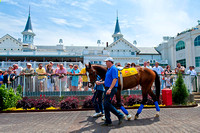 Bodemeister schools in the paddock at Churchill Downs in prepara