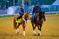 Tapiture (left) is escorted by trainer Steve Asmussen (right) at Churchill Downs for his daily preparation for the 140th Kentucky Derby.