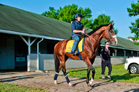 Union Rags with exercise rider Peter Brette, heads out to the track for a jog in preparation for Kentucky Derby 138.