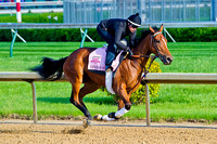 Empress Of Midway galloped 1 & 1/2 miles in preparation for the 140th Kentucky Oaks.