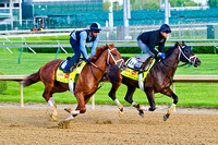 Vinceremos and Danza work together on the main track in preparation for the 140th Kentucky Derby at Churchill Downs in Louisville, Kentucky.