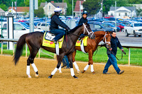 Intense Holiday and Danza head out for exercise in preparation for the 140th Kentucky Derby.