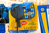 Saddlecloth for Kentucky Derby 138 contender Liaison.