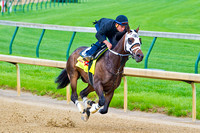 General A Rod, with Joel Rosario up, worked a half mile in preparation for the 140th Kentucky Derby.