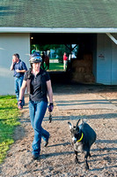 A friendly goat and his handler visit Michael Matz's barn at Churchill Downs in Louisville, KY.