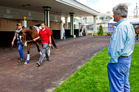 Trainer Steve Asmussen observes Kentucky Oaks 140 contender Untapable as she walks around the paddock during a scholling session.