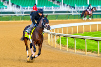 Vinceremos jogs on the main track in preparation for the 140th Kentucky Derby at Churchill Downs in Louisville, Kentucky.