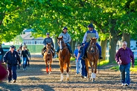 Belmont Stakes 146 Photo Blog Day 1
