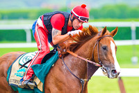Exercise rider William Degado pats Belmont Stakes and Triple Crown contender California Chrome after galloping around the Belmont Park race track in New York.