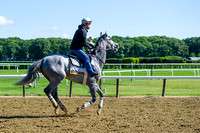 Belmont Stakes contender Cherry Wine, trained by Dale Romans, gallops in preparation for the Belmont Stakes at Belmont Park in Elmont, New York.