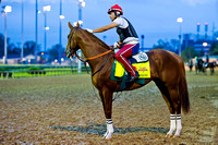 Exercise rider Willy Delgado soothes California Chrome before heading out for exercise in preparation for the 140th Kentucky Derby.
