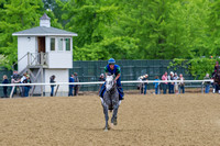 Frosted gallops in preparation for the Belmont Stakes (GI) at Belmont Park in Elmont, New York.