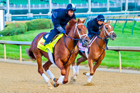 Danza gallops past stablemate My Miss Sophia as they both prepare for their races.