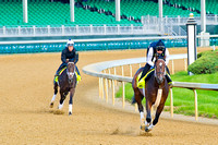 Commanding Curve leads the way ahead of rival Intense Holiday in preparation for the 140th Kentucky Derby.