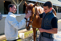 Jockey Florent Geroux soothes I'm A Chatterbox after morning exercises in preparation for the Kentucky Oaks.