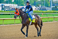 General A Rod heads out to gallop 1 & 1/2 miles in preparation for the 140th Kentucky Derby.