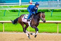 Got Lucky gallops around the main Churchill Downs race track in preparation for the 140th Kentucky Oaks.