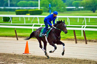 Belmont Stakes 146 contender Matusak, trained by Bill Mott, gallops over the sloppy track at Belmont Park in New York.